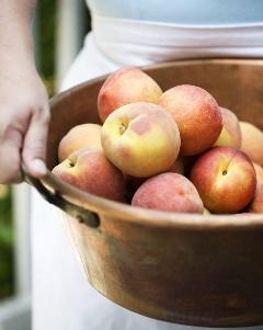 Peaches_014-1