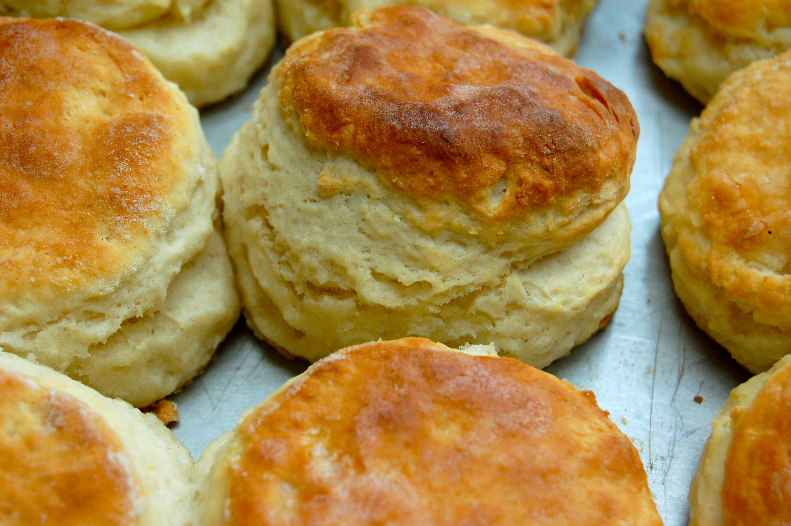 Homemade fluffy biscuits are easy to make with this simple recipe using plenty of baking powder to help create giant biscuits. Serve with gravy or butter and jam. By John Pickett; WATCH. Cheddar Bay Biscuits.