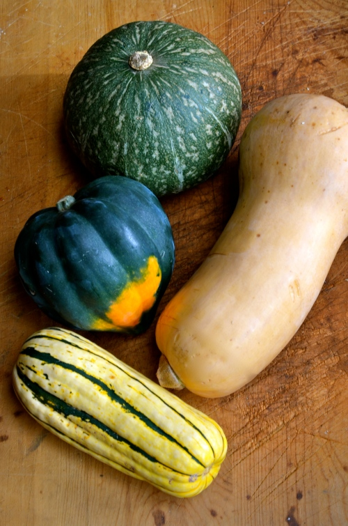 Winter Squash Glossary on www.virginiawillis.com