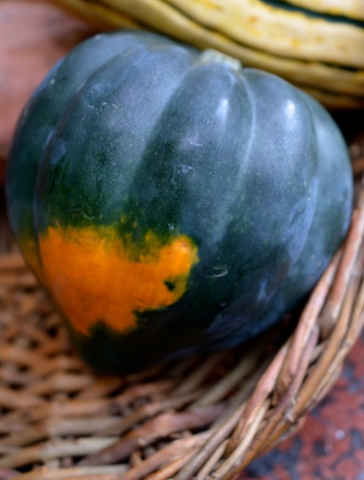acorn squash on www.virginiawillis.com