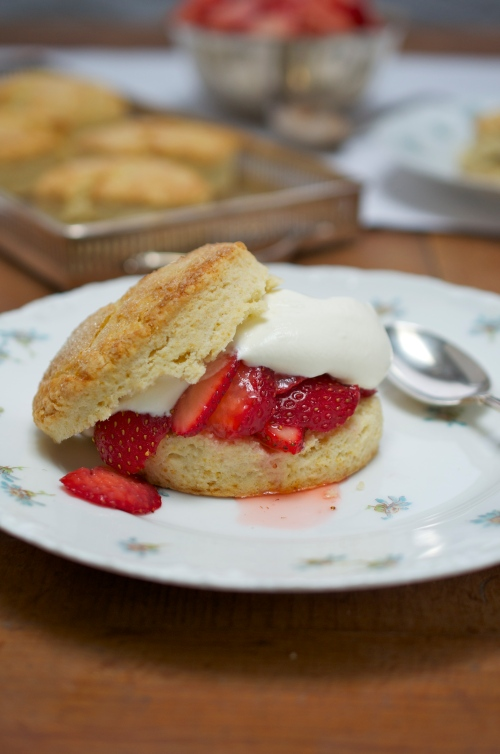 Brown Sugar Strawberry Shortcake on Down-Home Comfort